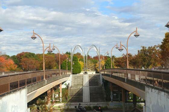 光が丘公園 けやき広場