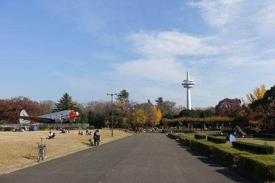 所沢航空記念公園 飛行機 紅葉