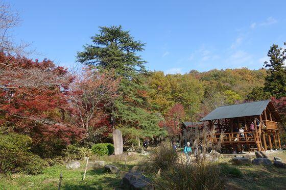 紅葉 嵐山渓谷