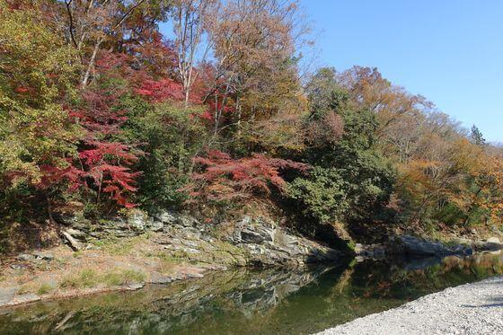嵐山渓谷 紅葉