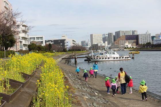 勝島運河 菜の花