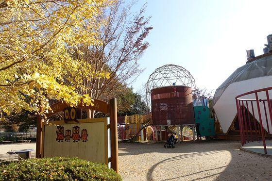 国営武蔵丘陵森林公園 イチョウ