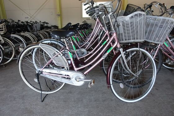 昭和の森 貸自転車