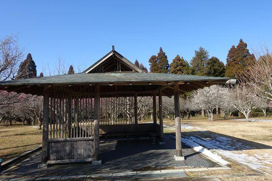 昭和の森 梅林内の東屋