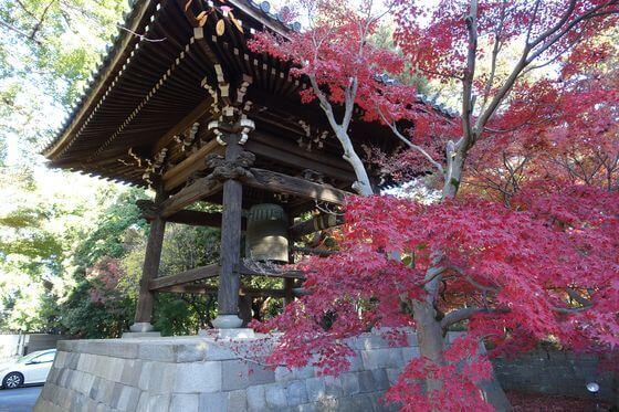 東漸寺 鐘楼 紅葉