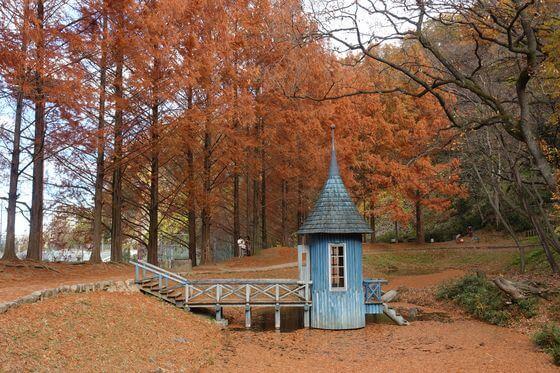 トーベヤンソンあけぼの公園 とんがり小屋