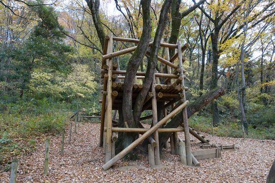 トーベヤンソンあけぼの公園 樹上の家