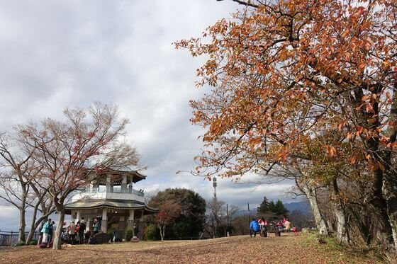 弘法山公園 展望台 紅葉