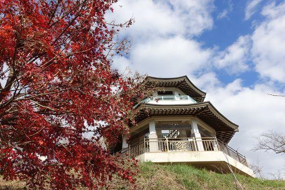 弘法山 紅葉