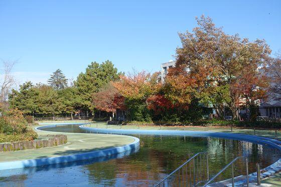 菊名池公園 プール