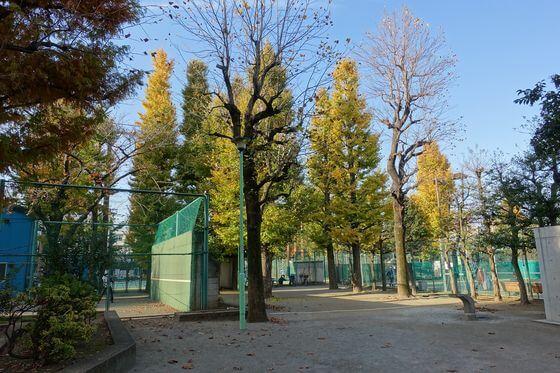 竹早公園 テニスコート