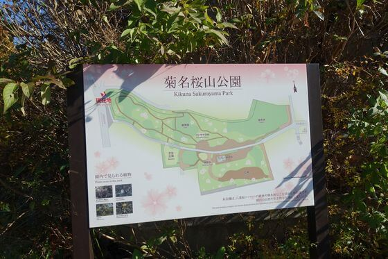 菊名桜山公園