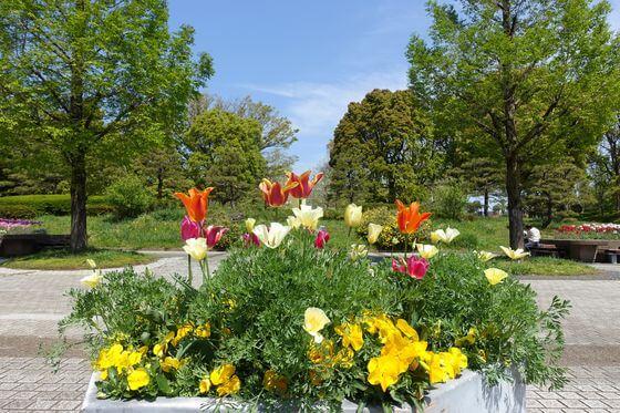 猿江恩賜公園 正面入り口 花壇