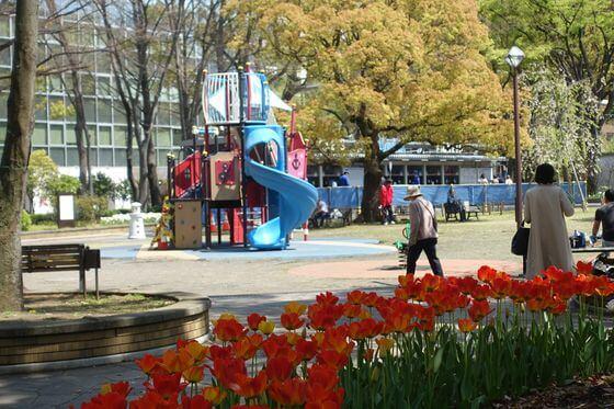 横浜公園 遊具