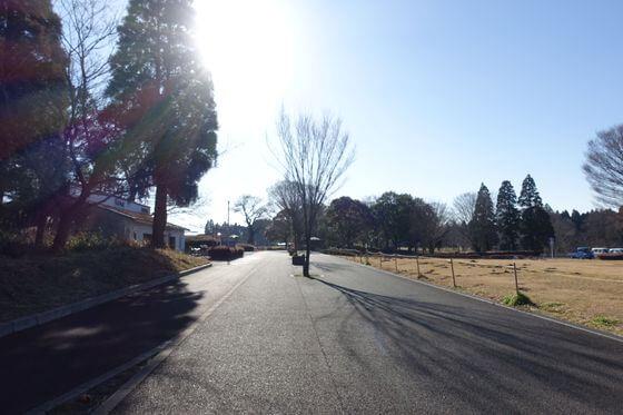 昭和の森 第2入口