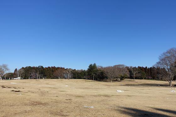 昭和の森 アクセス