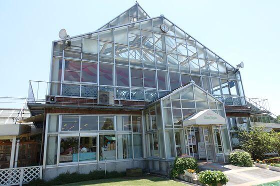 清水公園 グラスハウス