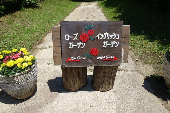 清水公園花ファンタジア バラ
