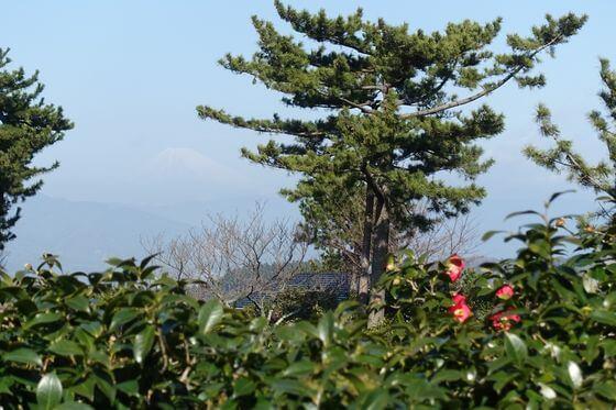 小室山公園 富士山