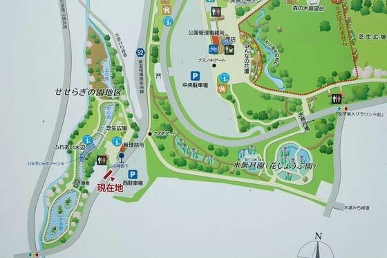 相模原公園 水無月園 場所