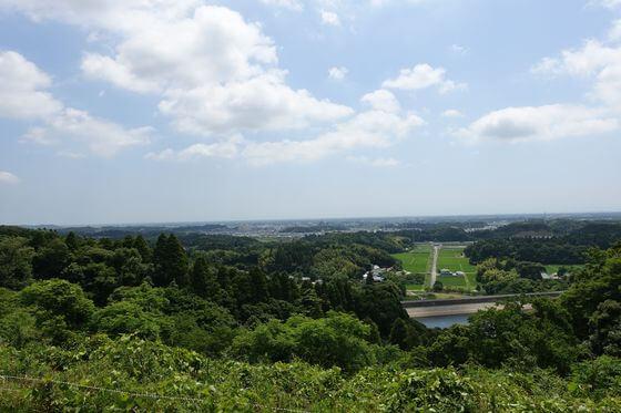 昭和の森 千葉 展望台