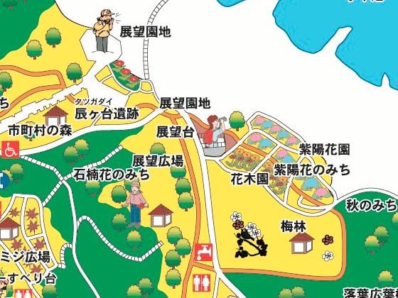 昭和の森 紫陽花 場所