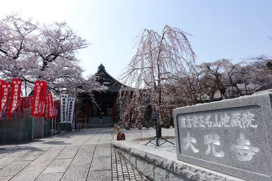 高尾 大光寺 桜