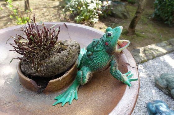 大光寺 蛙