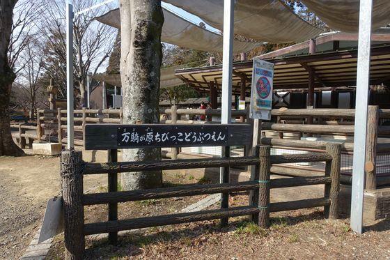 南万騎が原ちびっこ動物園