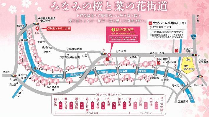 桜&菜の花ウォークラリー