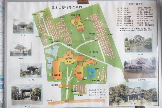 千葉県 妙行寺 境内図