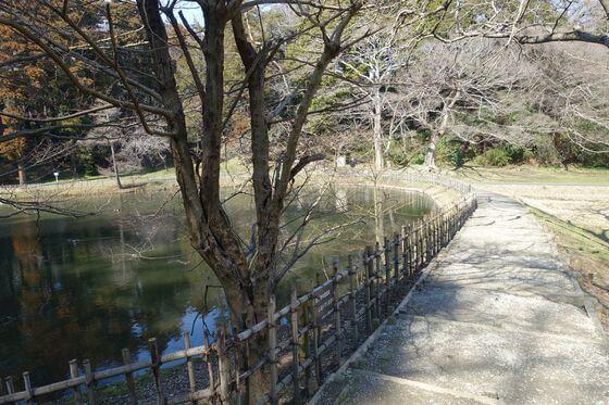 佐倉城址公園 姥が池