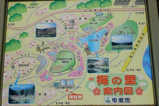 甲斐敷島梅の里 案内図