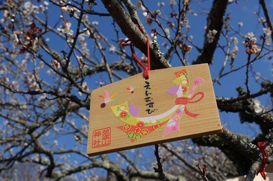 筑波山 福来梅の木 絵馬