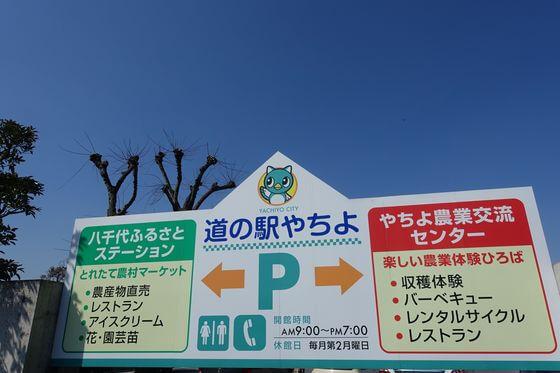 八千代新川千本桜 駐車場