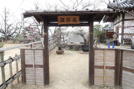 奈良 盆梅展