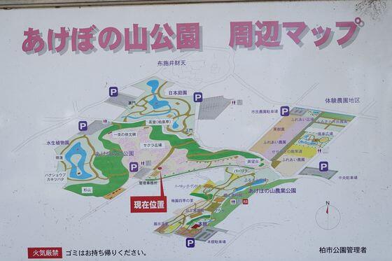 あけぼの山公園 桜 場所