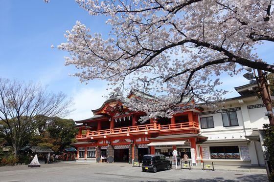 千葉神社 春