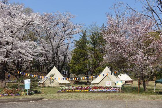 狭山稲荷山公園 グランピング