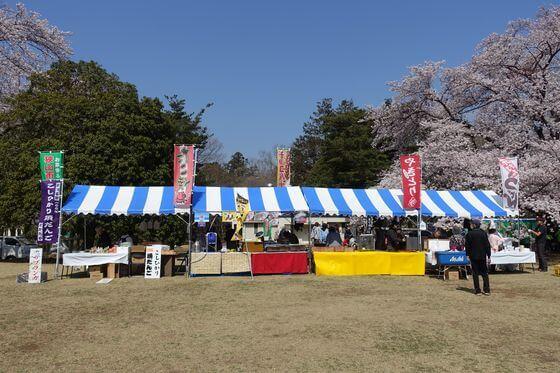 狭山稲荷山公園 桜祭り