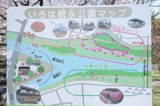 いろは親水公園 桜 場所