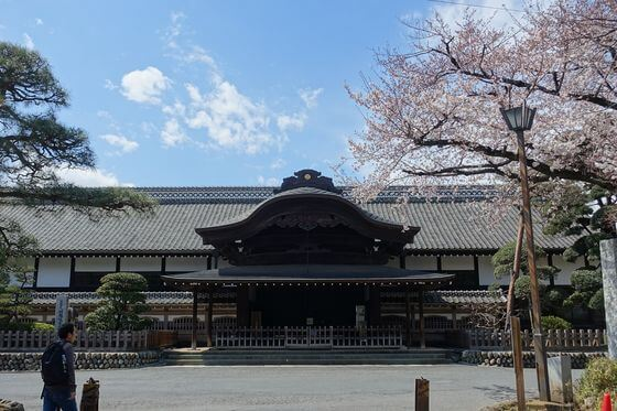 川越城 桜