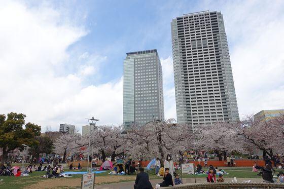 錦糸公園 花見