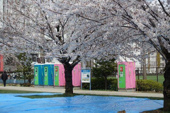 錦糸公園 桜 簡易トイレ