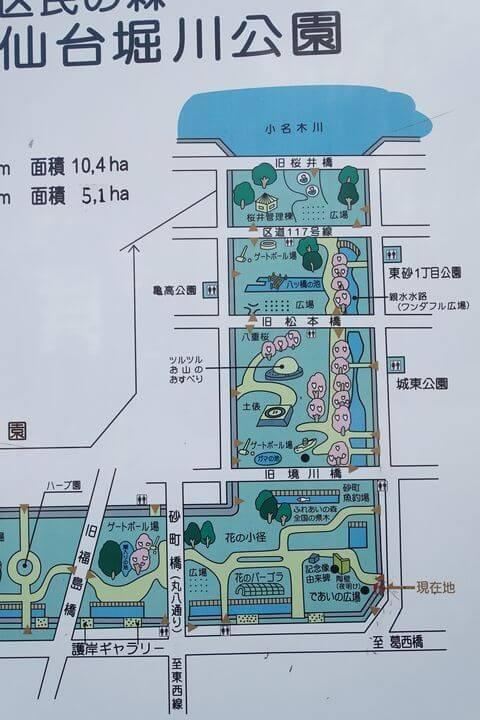 仙台堀川公園 桜 場所