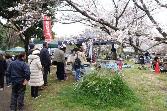 祖師谷公園 桜まつり