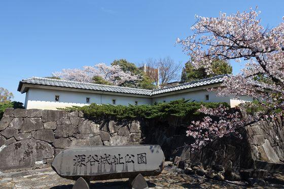 深谷城址公園 桜