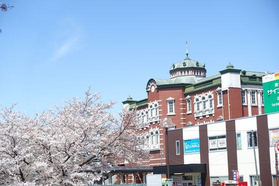 深谷駅 桜