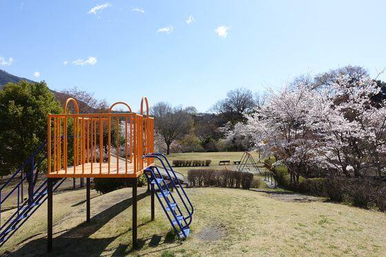 猿橋近隣公園 花見