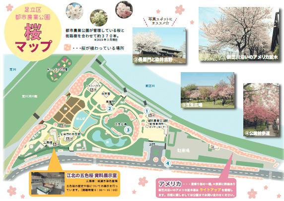 都市農業公園 桜 場所